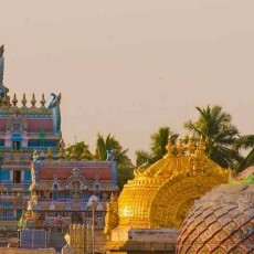 INDIA SUD • 11 marzo 2019   viaggi di gruppo tamil nadu e isole andamane sud india subcontinente indiano kerala