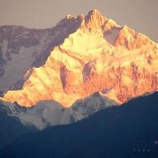 INDIA ORIENTALE: Sikkim Explorer   wildlife safari viaggi individuali subcontinente indiano nord india india orientale himalaya