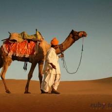 RAJASTHAN: Sinfonia Rajput   viaggi individuali tipologia viaggio subcontinente indiano siti unesco rajasthan nord india archeologia