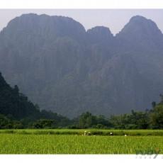 INDOCINA: laos del sud & cambogia 12 15gg • partenze garantite   viaggio ruby group tipologia viaggio siti unesco partenze garantite 2 laos estremo oriente cambogia archeologia