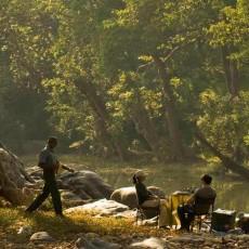 PARCHI INDIANI: Tigri, Calcutta e  Isole Andamane   wildlife safari viaggi individuali viaggi di nozze subcontinente indiano nord india india orientale beach spa