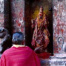 INDIA SUD: legno di sandalo • partenze garantite   viaggi di gruppo tipologia viaggio tamil nadu e isole andamane sud india subcontinente indiano partenze garantite 2 kerala karnataka e andhra pradesh archeologia