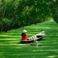 LAOS e VIETNAM   vietnam viaggi individuali tipologia viaggio siti unesco laos estremo oriente archeologia