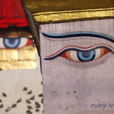 INDIA NEPAL: sari e sadu + nepal• partenze garantite   tipologia viaggio subcontinente indiano siti unesco partenze garantite 2 paesi himalayani nord india nepal paesi himalayani nepal india centrale e del nord archeologia