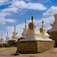 MONGOLIA: la via delle steppe   wildlife safari viaggi individuali viaggi epici e viaggi multi paesi tipologia viaggio mongolia asia centrale
