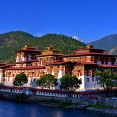 BHUTAN e GLENBURN TEA ESTATE   viaggi individuali paesi himalayani bhutan
