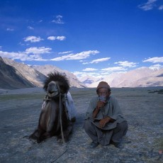 LADAKH: glamping ladakh   viaggi individuali tipologia viaggio subcontinente indiano paesi himalayani ladakh homepage post himalaya