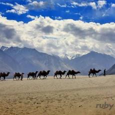 LADAKH festival di Hemis   viaggi di gruppo subcontinente indiano paesi himalayani ladakh himalaya festivals eventi archeologia