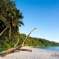 INDIA • Isole Andamane   viaggi individuali tipologia viaggio tamil nadu e isole andamane sud india subcontinente indiano nord india india orientale homepage post beach spa