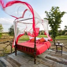 INDIA: Safari di lusso e Rajasthan   wildlife safari viaggi individuali tipologia viaggio subcontinente indiano rajasthan luxury experience india centrale e del nord