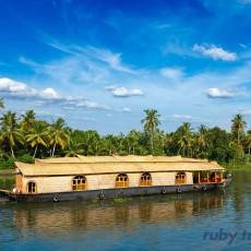 INDIA SUD: Laltro Kerala   wildlife safari viaggi individuali sud india subcontinente indiano kerala i favoriti ruby travel beach spa barche treni