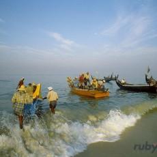 INDIA SUD: Kerala & Kovalam Beach   viaggi individuali tipologia viaggio sud india subcontinente indiano kerala beach spa barche treni ayurveda
