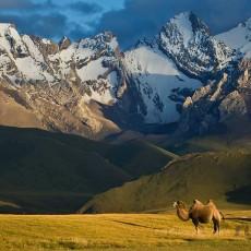 La Via della Seta : cina • kirghizistan • uzbekistan    viaggi individuali viaggi epici e viaggi multi paesi uzbekistan siti unesco cina asia centrale archeologia