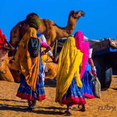 RAJASTHAN e NORD: passaggio in india • partenze garantite   viaggi di gruppo subcontinente indiano rajasthan partenze garantite 2 nord india india centrale e del nord homepage post