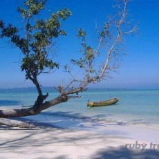 INDIA ORIENTALE • Isole Andamane da nord a sud   viaggi individuali tamil nadu e isole andamane subcontinente indiano india orientale i favoriti ruby travel homepage post beach spa