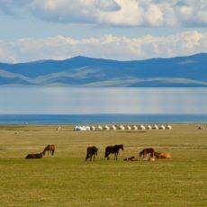 Kyrgyzisthan   wildlife safari viaggi individuali siti unesco kyrgyzistan asia centrale